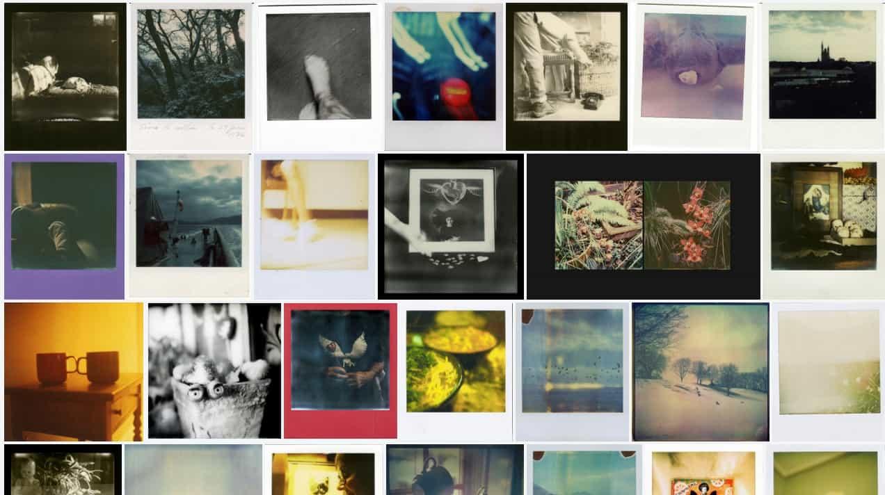 polaroid sx-70 pictures