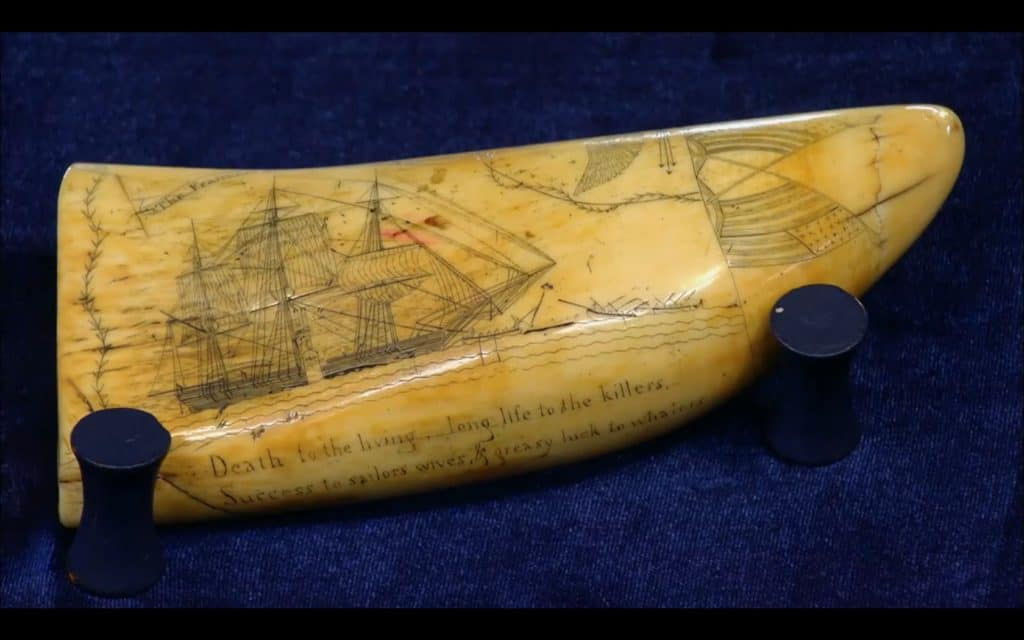Scrimshaw Tooth © Antiques Roadshow